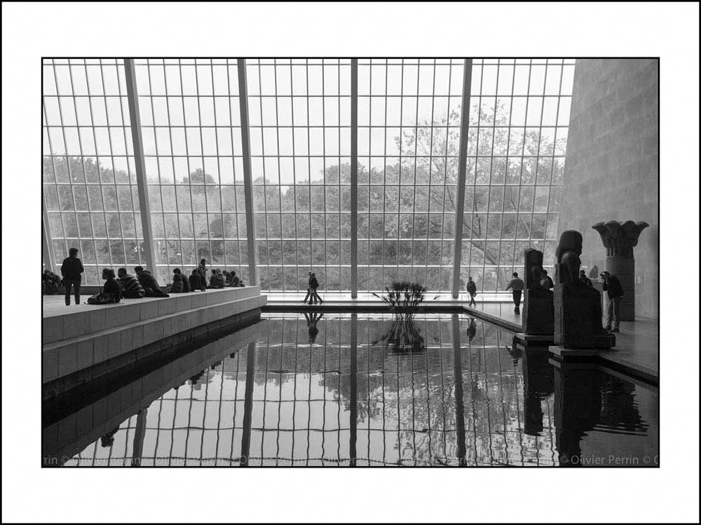 New York. 5ème Avenue. MOMA.